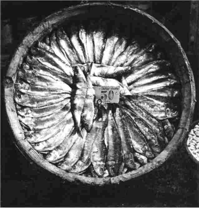 Fish Platter, Brittany, France, 1935