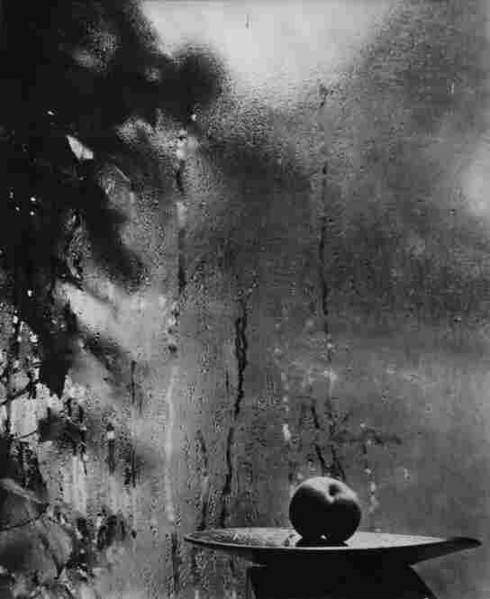 My Window, 1952