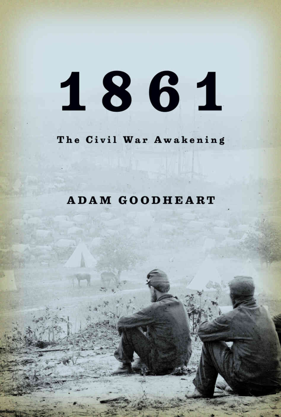 Adam goodheart looking at the civil war 150 years later npr