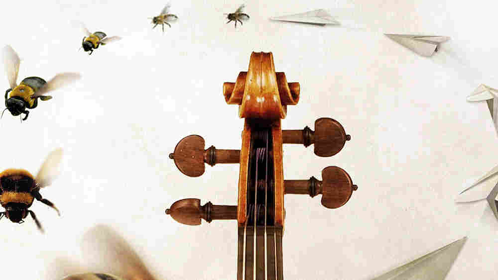 """Lawrence Dillon's String Quartets have names like """"Air,"""" """"Flight"""" and """"The Infinite Sphere."""""""