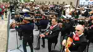 """Can we play a song for you while you dine?"" A few of the 549 Mariachis who performed to break the Guinness World Record of The Number of Mariachis Playing At The Same Time on August 30, 2009 in Guadalajara, Mexico."