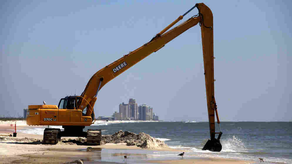 Workers clean oil leftover from the Deepwater Horizon oil spill in the Gulf of Mexico last month at Perdido Key State Park in Pensacola, Fla. The state has until April 20 to decide whether to join a lawsuit to recoup economic damages.