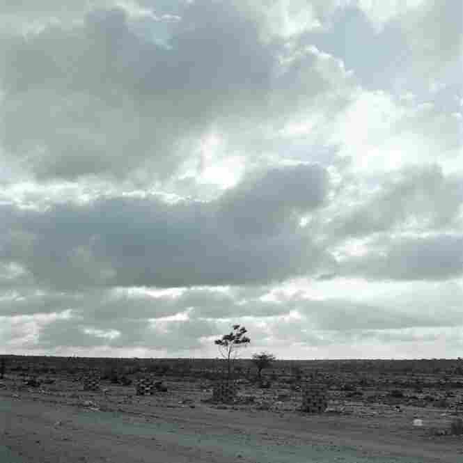 Somaliland landscape.