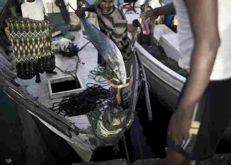 Fishermen unload their boat in the port city of Berbera after several days at sea.