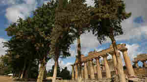 In this 2007 photo, the Greek Temple of Zeus is seen through trees in the ancient city of Cyrene in northeastern Libya.