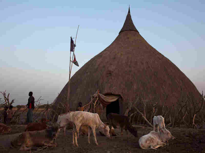 A southern Sudanese family from Nuer tribe prepares for the night in front of their traditional hut in Bentiu.