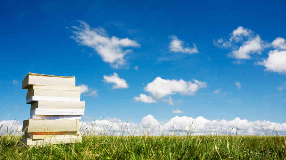 A stack of books in a grassy field.