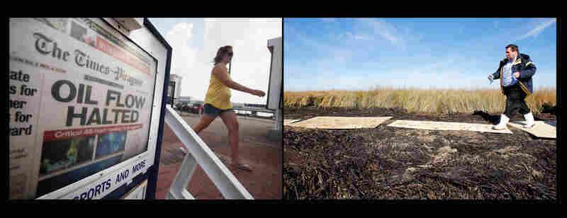 "Left: A New Orleans Times-Picayune front page reads ""Oil Flow Halted,"" July 16, 2010, in New Orleans. Right: Plaquemines Parish President Billy Nungesser walks through dead and oiled marshland in Port Sulphur, La., Jan. 7, 2011."