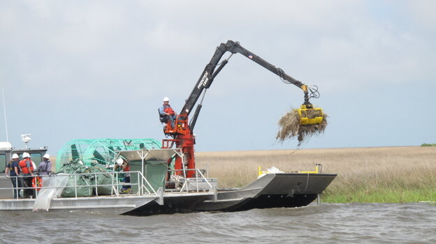 Cleanup crews in the marshlands in Louisiana are using a long-armed machine with a rake on the end to help restore areas that were inundated with oil from the BP spill last April.