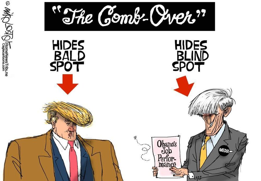 Image result for cartoons on trump's bald spot