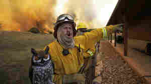 Firefighter Craig Howard yells to fire crews as they take up positions to save a house from the wildfire near Possum Kingdom, Texas, on Tuesday.