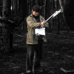 A technician checks a spot with a Geiger counter in a forest that burned in 1992. The wildfire released radioactive particles into the air that were deposited there during the 1986 nuclear accident at Chernobyl. Experts worry nearby forest, which is becoming overgrown, could again be ripe for a blaze.
