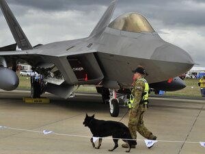A security personnel guards a U.S. Air Force F-22 fighter. The President has recently called for $400 billion in cuts to the Pentagon budget over the next 12 years.