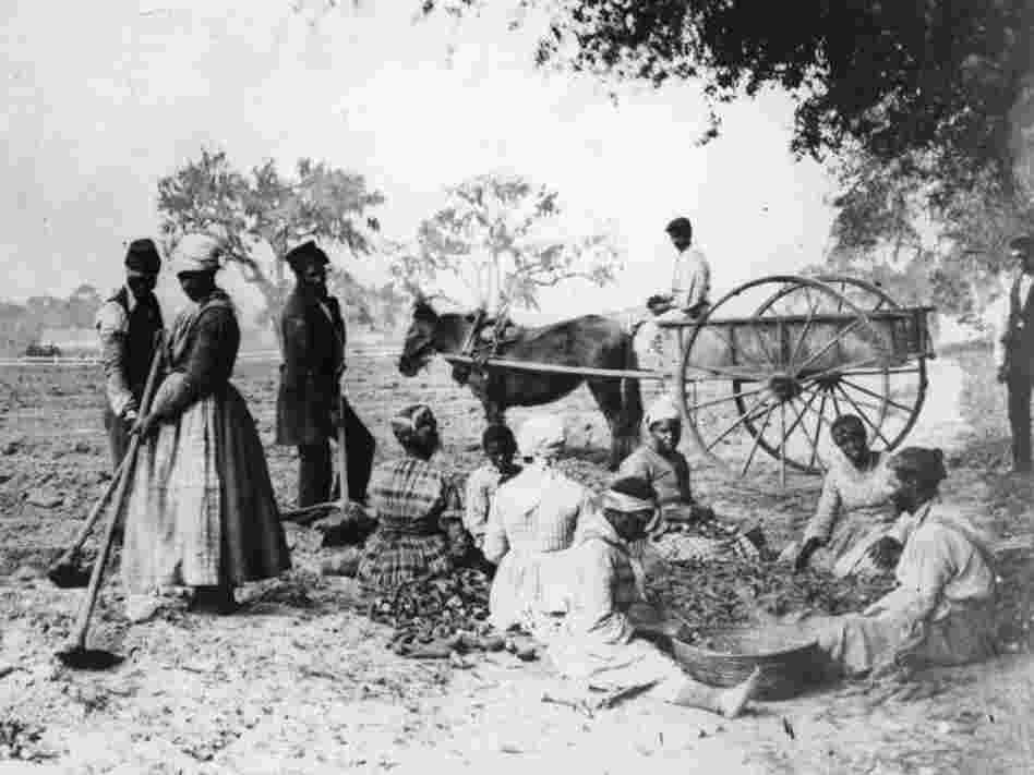 Did slavery cause the civil war essay