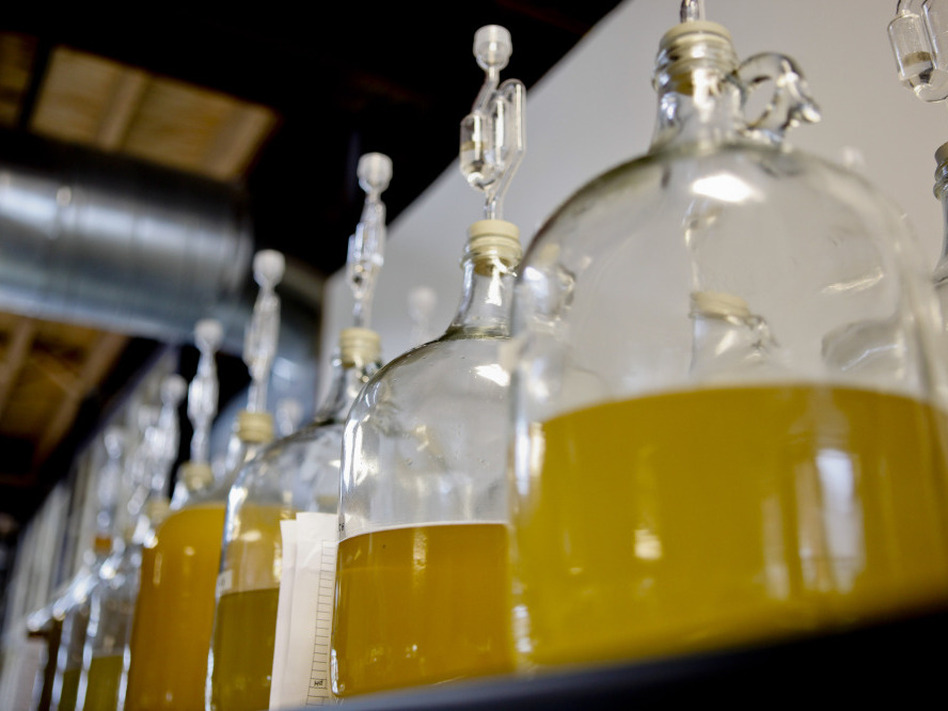 Long associated with the Middle Ages, mead, a fermented honey wine, is making a comeback — and not just at Renaissance fairs. Above, jugs of mead at Brothers Drake meadery in Columbus, Ohio. ( )