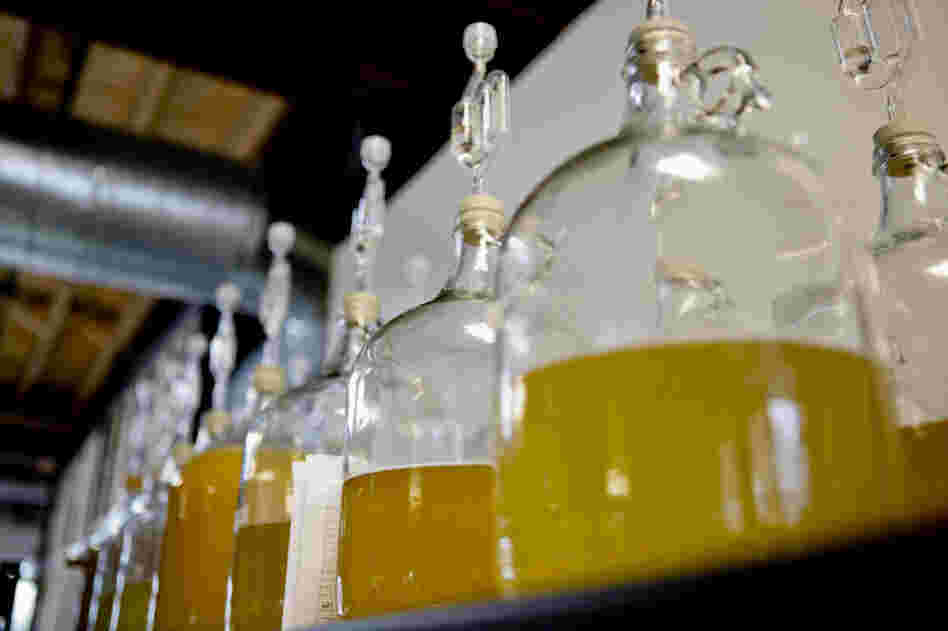 Long associated with the Middle Ages, mead, a fermented honey wine, is making a comeback — and not just at Renaissance fairs. Above, jugs of mead at Brothers Drake meadery in Columbus, Ohio.