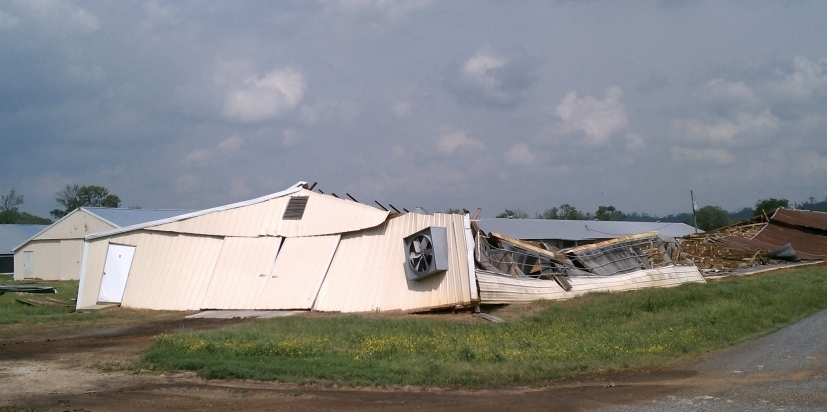 Tornadoes Smashed Alabama S Poultry Industry Npr