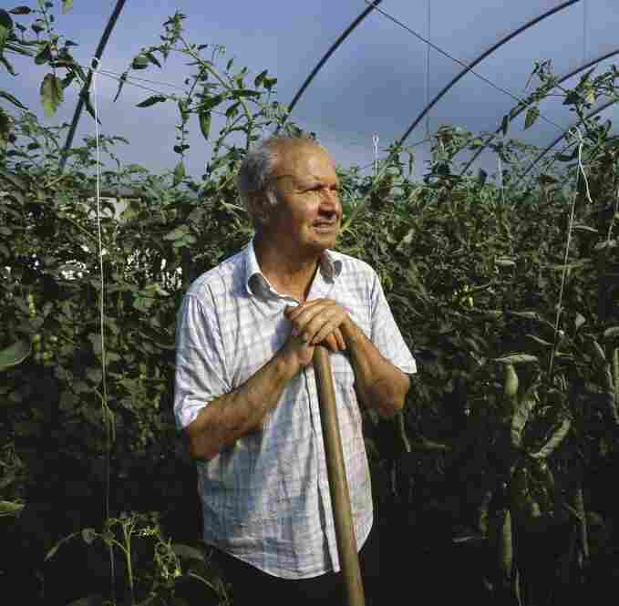 Giuseppe Esposito, a local organic farmer and former police officer, grows his own organic food on his farm in Marigliano. He condemns the continuation of waste disposal in the land around his city.