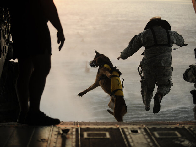 A U.S. Army soldier with the 10th Special Forces Group and his military working dog jump off the ramp of a CH-47 Chinook helicopter from the 160th Special Operations Aviation Regiment during water training over the Gul