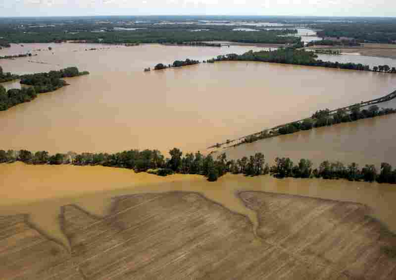 May 3: Flooded fields in northwestern Tennessee.