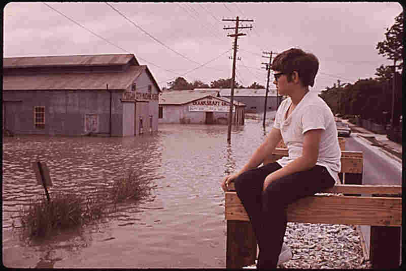 In the spring of 1973, the overflowing Mississippi River reached its highest level in more than 150 years. A boy surveys the Atchafalaya River Basin from a retaining wall built to keep floodwaters in check in Morgan City, La.