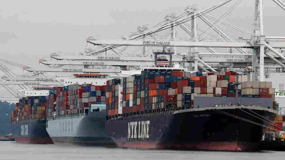 Container ships are positioned under cranes at the Port of Oakland in California. Ships carrying cargo have introduced rash-causing parasites and the Asian clam, which has altered the food web of San Francisco Bay.