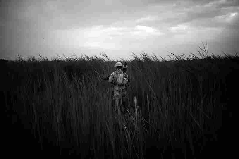 Lance Cpl. Joshua Stowers stands in the middle of a field of tall grass near the poppy fields in Sangin District.