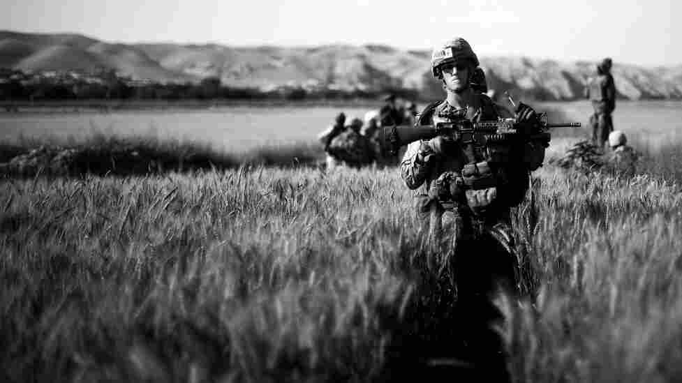 Corporal Daniel Wheeler, Bravo Co. 1/5 Marines, walks through a waist high wheat field on a patrol in Sangin District near the Helmand River in southern Afghanistan earlier this month.