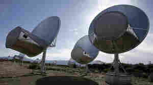 Radio telescopes of the Allen Telescope Array, seen here soon after their construction in 2007, gave SETI's search for intelligent alien life a big boost. Now the array, located in Hat Creek, Calif., has lost the funding it received from the California state government.