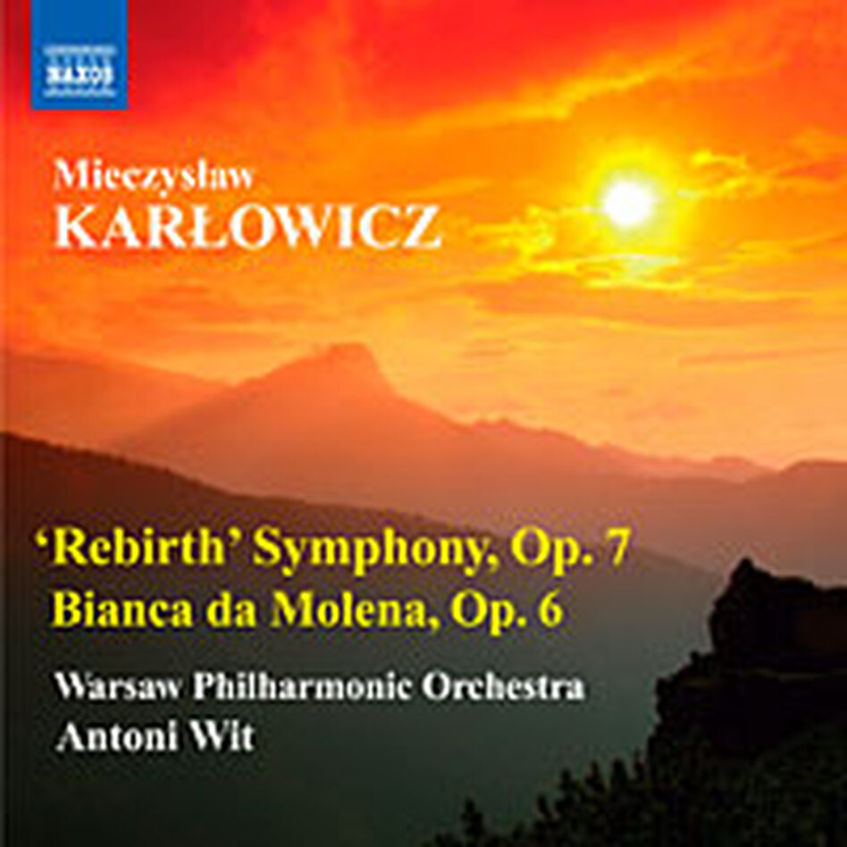 Cover for Karlowicz.