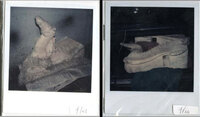 Polaroid images of griffin in trunk.