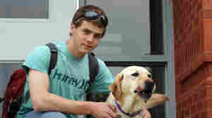 Service Dogs Teach Educators About Disabilities