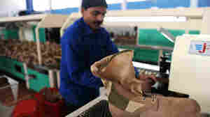 A Pakistani worker labors on a machine in a factory in Kabul, producing boots for the Afghan National Police and Afghan National Army. Higher wages and, in some cases, better security in Afghanistan have drawn workers from Pakistan.