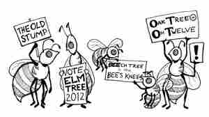 Nature's Secret: Why Honey Bees Are Better Politicians Than Humans