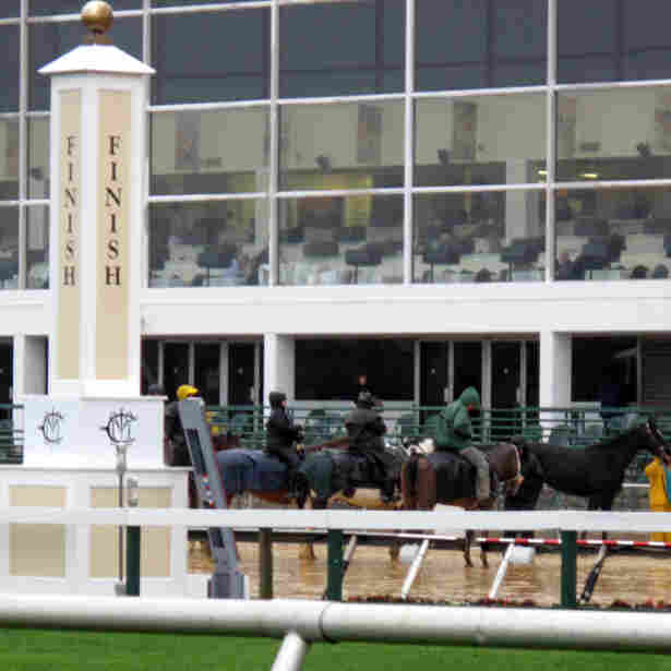 Horse Racing Squeezed By Gambling's Spread