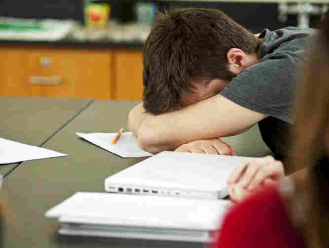 The typical high school senior gets less than seven hours of sleep on school nights. But teenagers need a great deal more.