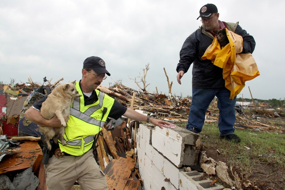 Deputy Eddy Mathews of Mayes County, Okla., hands off a dog to volunteer Mike Hughey of Ozark, Mo., after rescuers found the dogs in the rubble of a destroyed home.  (AP)