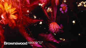 Brownswood Electr*c 2 comes out on June 2