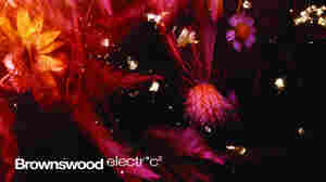 Stream A Track From Gilles Peterson's Compilation: Brownswood Electr*c 2