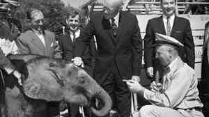 President Dwight Eisenhower touches the head of Dzimbo, a 440-pound elephant, on Oct. 12, 1959. The French Community of African Republics sent Dzimbo to Washington as a gift for the president.