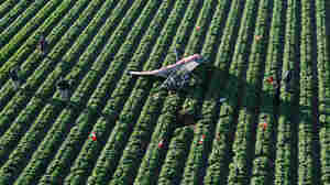 An ultralight aircraft with a basket outfitted for carrying pounds of marijuana crashed into a lettuce field north of San Luis, Ariz., three years ago. The number of ultralights illegally crossing into the U.S. nearly doubled last year.