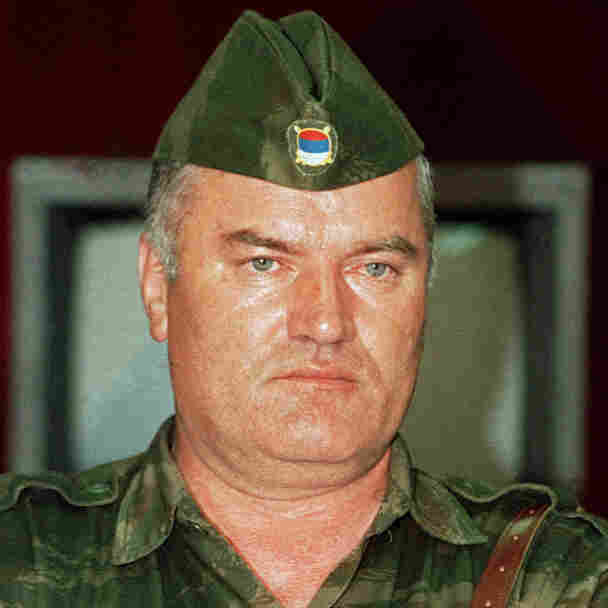 Grim Reading: The Mladic Indictment