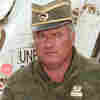Mladic Arrest Removes 'Stain' From Serbia
