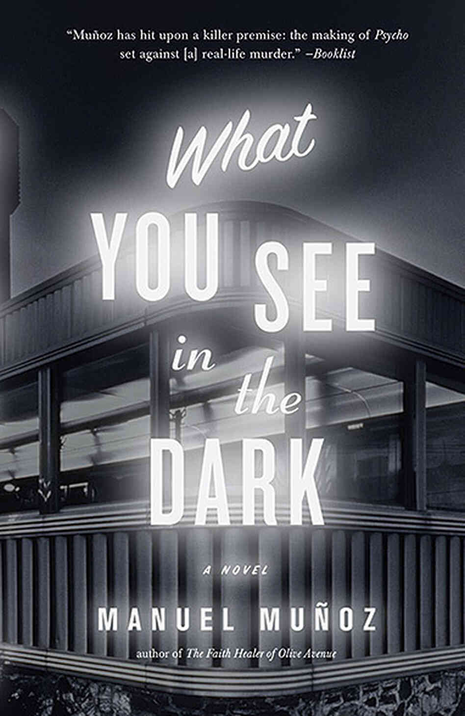 What You See in the Dark, by Manuel Munoz