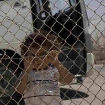 Egypt Reopens Gaza Border Crossing