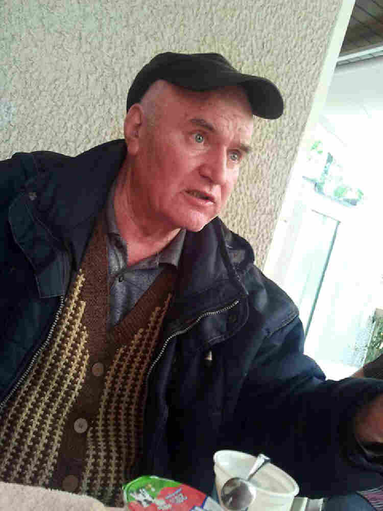 Former Bosnian Serb Army Commander Ratko Mladic shortly after his arrest.