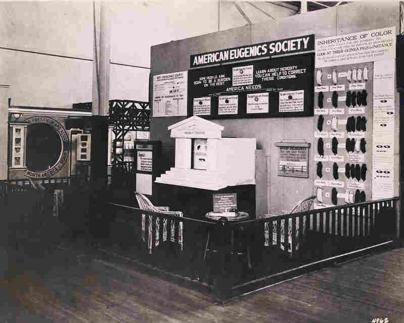 Exhibits like this one, seen at an exposition in Philadelphia in 1926, were popular. Based in New Haven, Conn., the American Eugenics Society attracted the support of nearly every major American eugenicist.