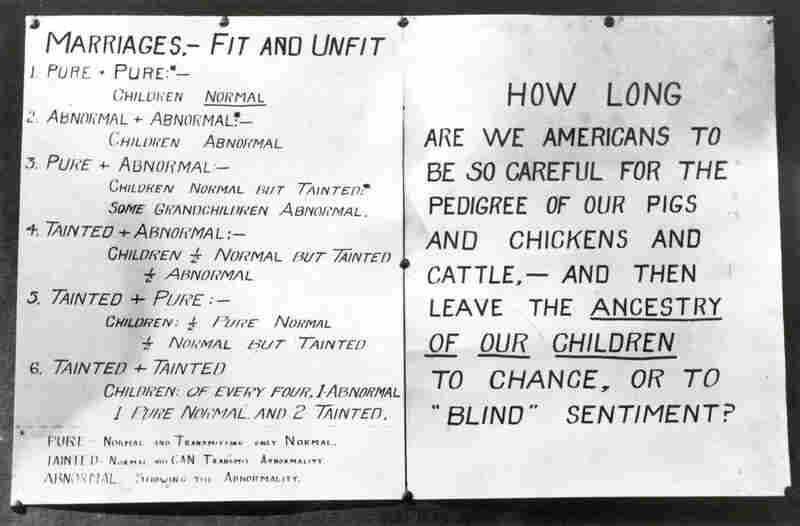 "Charts used at a Kansas Free Fair show types of marriage. The American Eugenics Society organized a series of ""fitter families contests"" in which participants (divided into small, medium and large family classes) were ranked based on the mental, physical and moral health of family members."