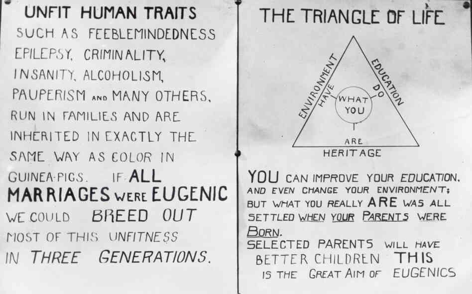 the american eugenics movement The eugenics movement during the progressive era by ted l  historians  divide the development of the american eugenics movement into three phases.