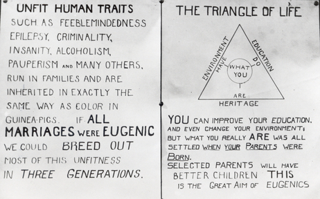 "The American Eugenics Society promoted ideas of racial betterment and genetic education through public lectures, conferences, publications and exhibits at county and state fairs — like this chart labeled ""The Triangle of Life"" from the Kansas Free Fair."
